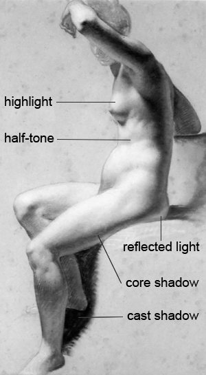Elements of light and shadow on the figure