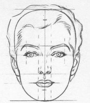 Face Proportions For Drawing