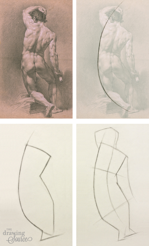 Drawing figures: starting with a gesture line