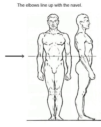 Proportions in figure drawing